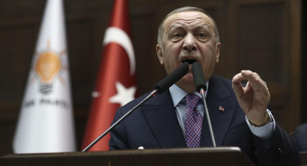 اردوغان از دستآورد مشترک روسیه و ترکیه در قره باغ سخن گفت