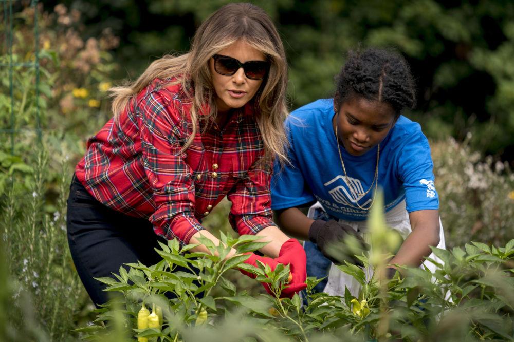 بانوی اول آمریکا هنگام برداشت حاصلات در باغی در نزدیکی کاخ سفید.