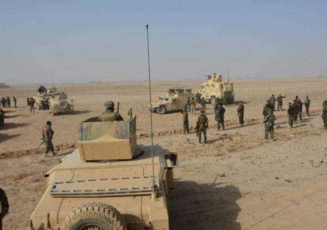 حملۀ طالبان بر حوزه هفتم شهر کندهار عقب زده شد