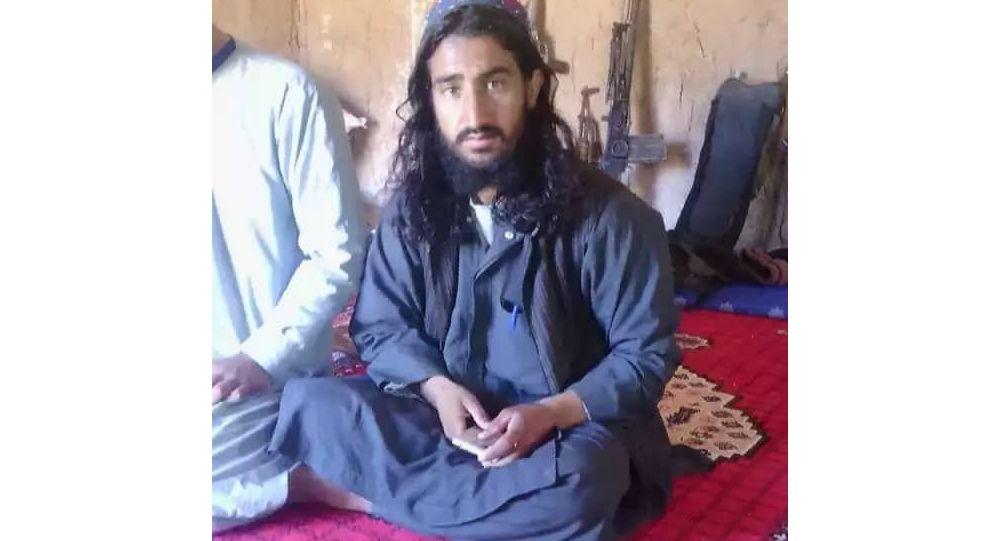 کشته شدن 21 جنگجوی طالبان به شمول یک عضو ارشد این گروه در زابل و هرات