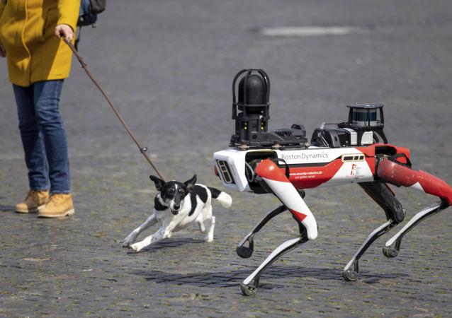 سگ رباتیک با تفنگ در امریکا