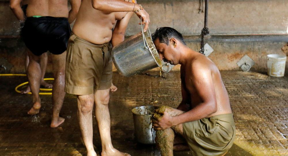 تولید محصولاتی از ادرار گاو در هند برای درمان کرونا + عکس