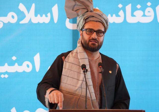 حمدالله محب: کابل مصمم به تشکیل یک دولت با مشارکت طالبان است
