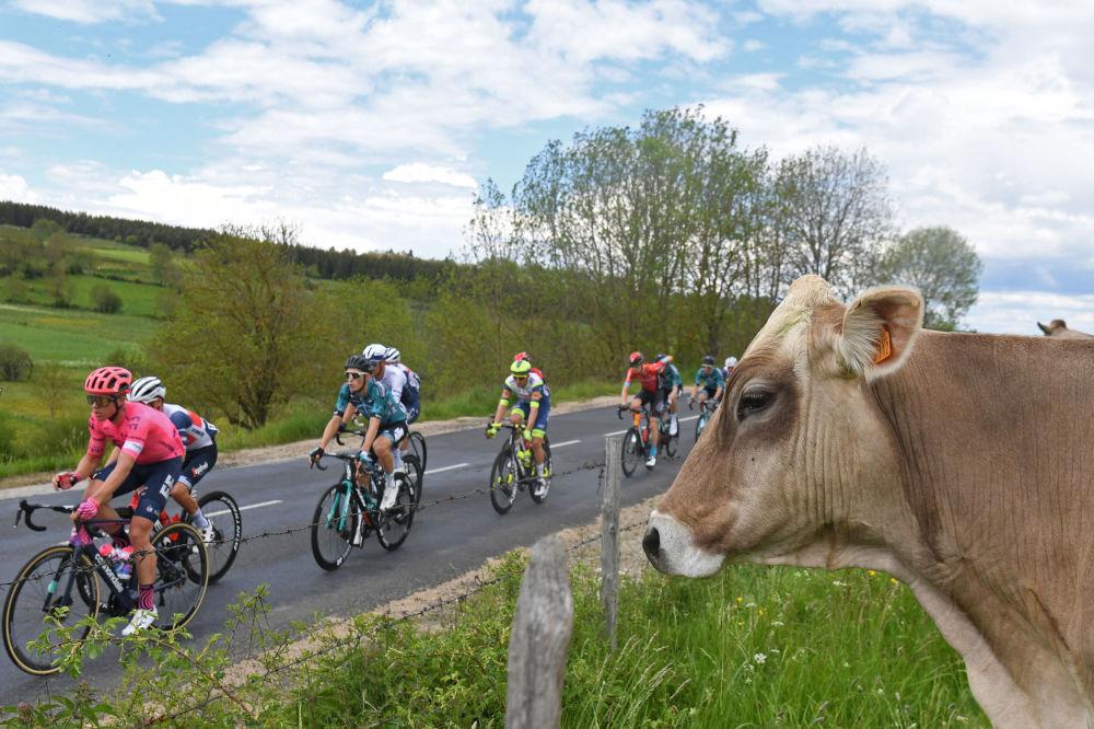 مسابقات باسکل سواری در Criterium du Dauphine  فرانسه