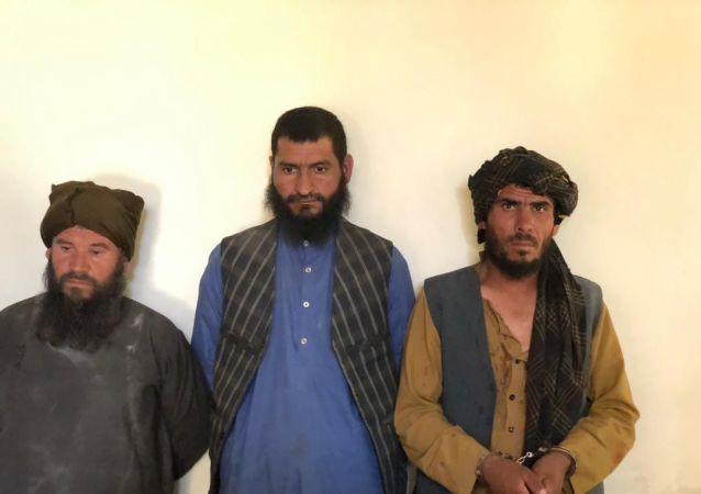 بازداشت سه تن از افراد نفوذی طالبان در ولایت سرپل