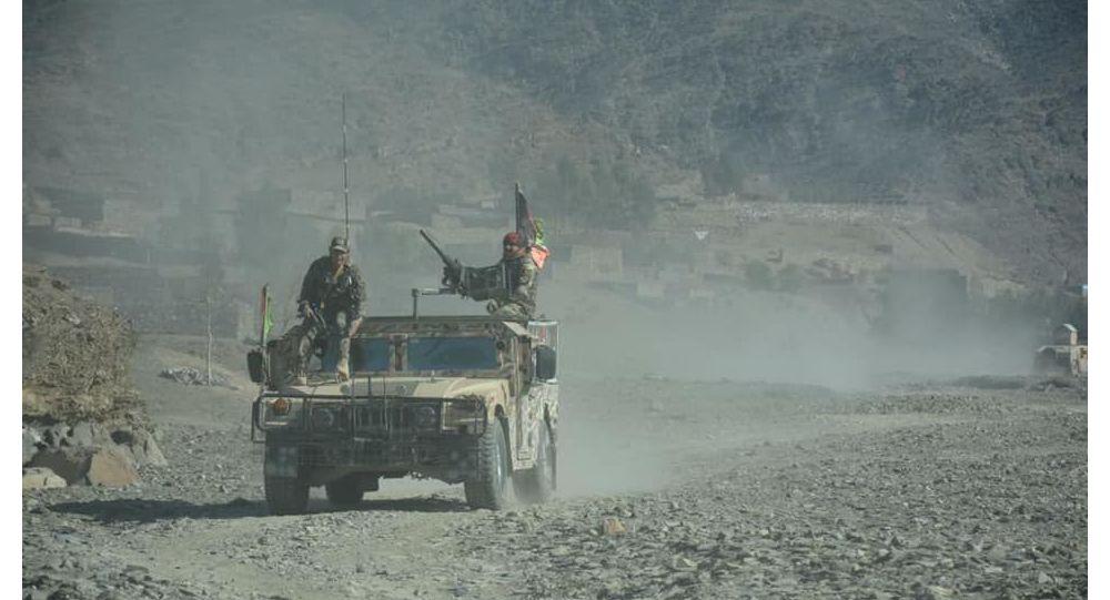 والی نامنهاد طالبان برای ولایت پکتیکا کشته شد