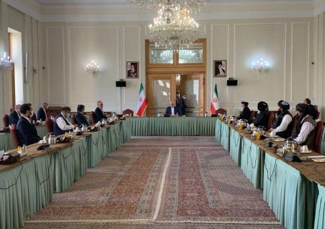 واکنش امریکا به حضور هیات طالبان در تهران