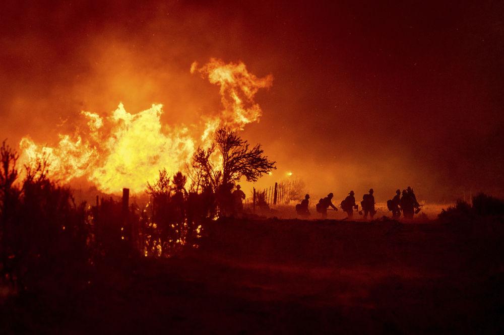مبارزه با آتش سوزی در جنگل ملی کالیفرنیا Plumas.