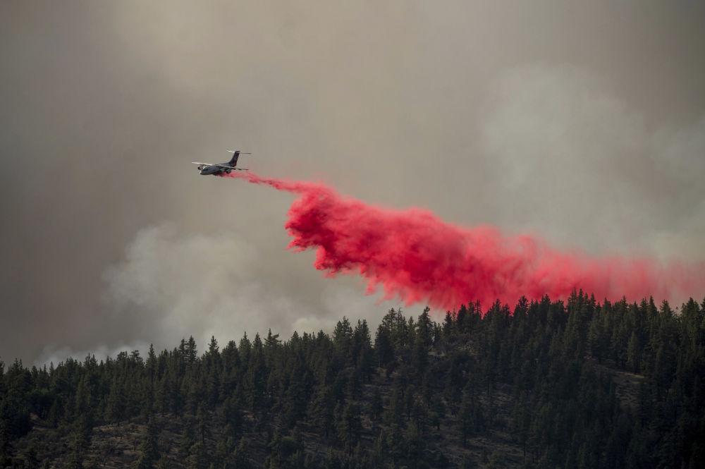تانکر هوایی نیروهای آتش نشانی امریکا درحال خاموش کردن آتش.