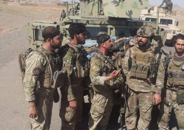 شکست طالبان در گذره و کرخ ولایت هرات