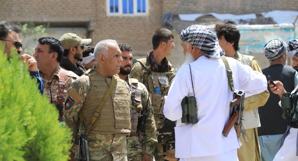 پیشروی نیروهای امنیتی در منطقه پل مالان هرات