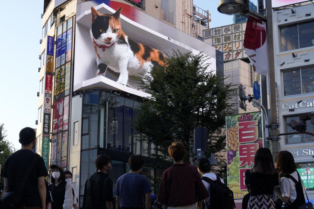 بهترین عکس های این هفته اسپوتنیک/توکیو جاپان