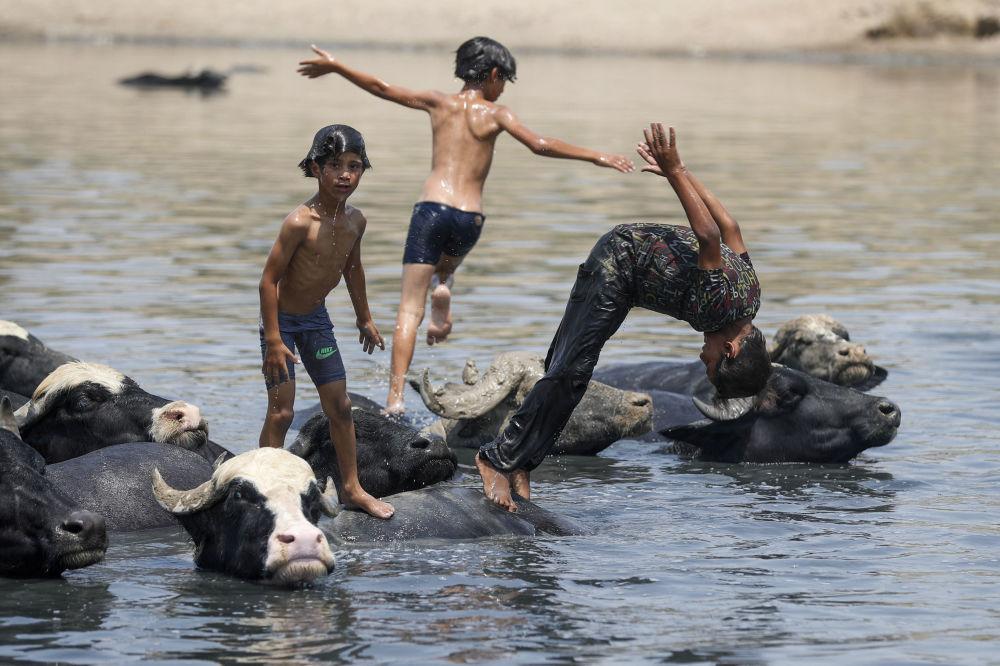 بهترین عکس های این هفته اسپوتنیک/کودکان در عراق