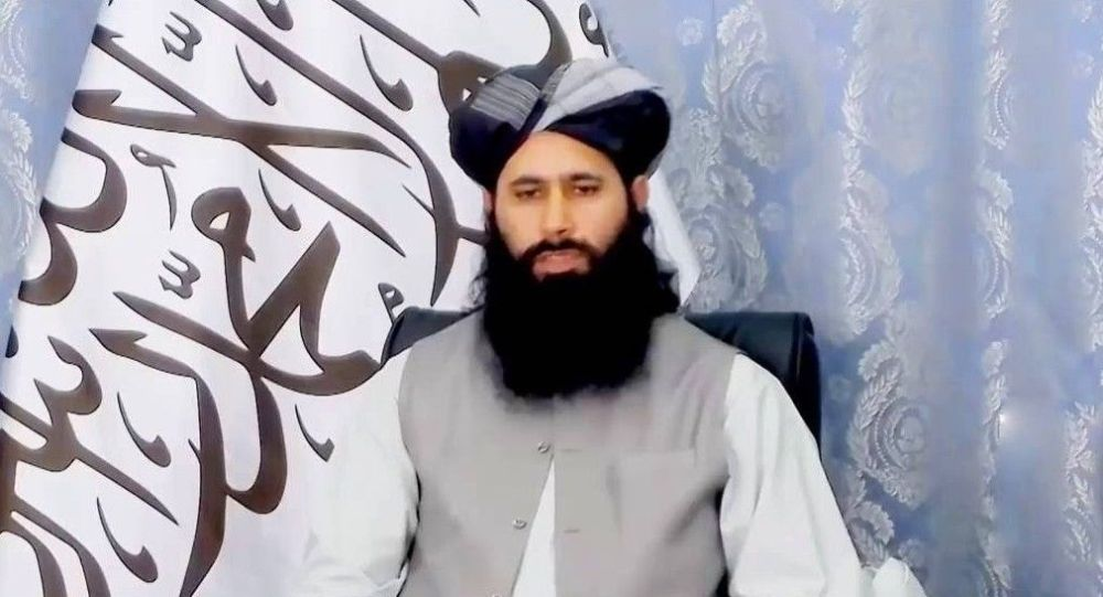 سخنگوی دفتر سیاسی طالبان