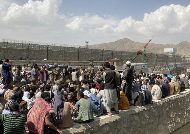 آغاز دوباره ای پروازهای حامل مهاجران افغانستانی به امریکا
