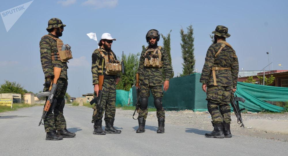 سخنگوی طالبان: توانایی مهار داعش را داریم