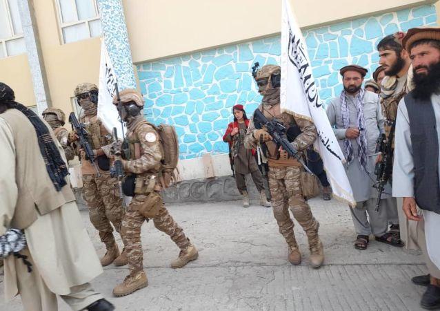 گروه طالبان غرامت جنگی میخواهند