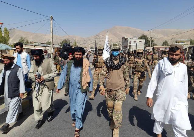 طالبان برای مرزها بدخشان قطعه ضربتی ایجاد کرد
