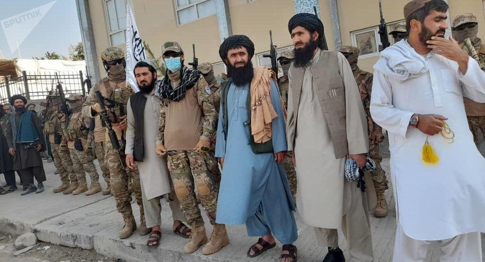 پاکسازی در صفوف نظامیان طالبان آغاز میشود