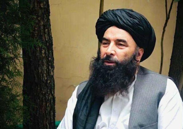 شورای راه نجات: طالبان اگر با مردم تعامل نکند حکومتشان سقوط می کند