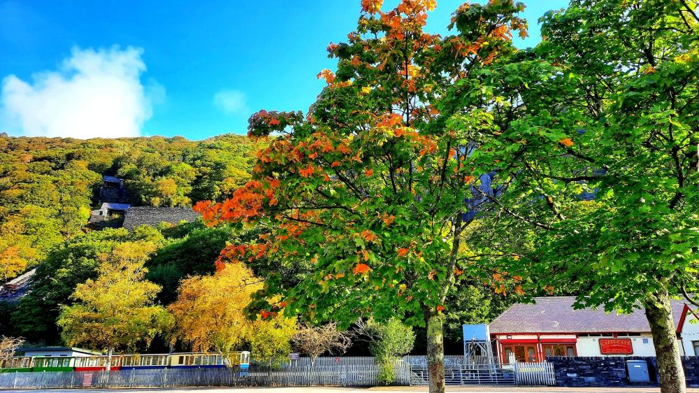 پاییز در روستای ولز انگلیس