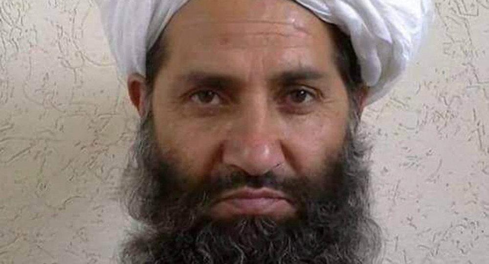 طالبان: امیرالمومنین ما امیرالمومنین کل جهان است