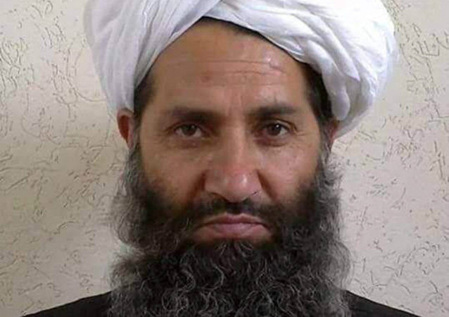 ناتو: ملاهبت الله آخوندزاده رول میانجی را دارد تا رهبر طالبان