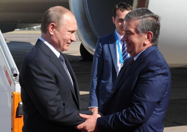 اوضاع افغانستان، محور گفتگوی پوتین و رئیس جمهور ازبکستان