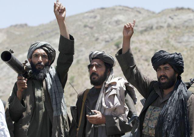 نشست سهجانبه؛ افغانستان، امریکا و ازبیکستان خواهان ادامه آتشبس هستند