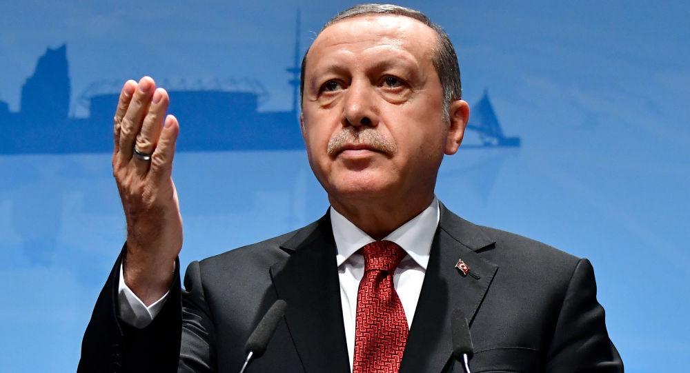 اردوغان رئیس جمهور ترکیه