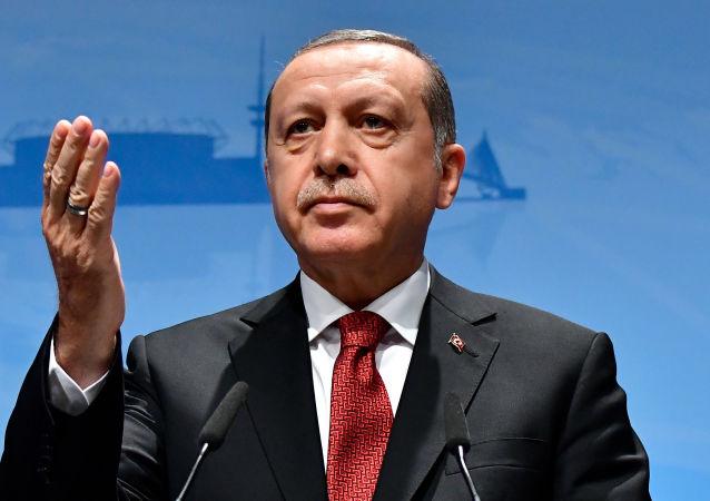 اردوغان: به تنهایی با داعش جنگیدیم