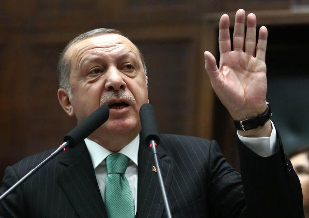رجب اردوغان رئیس جمهور ترکیه
