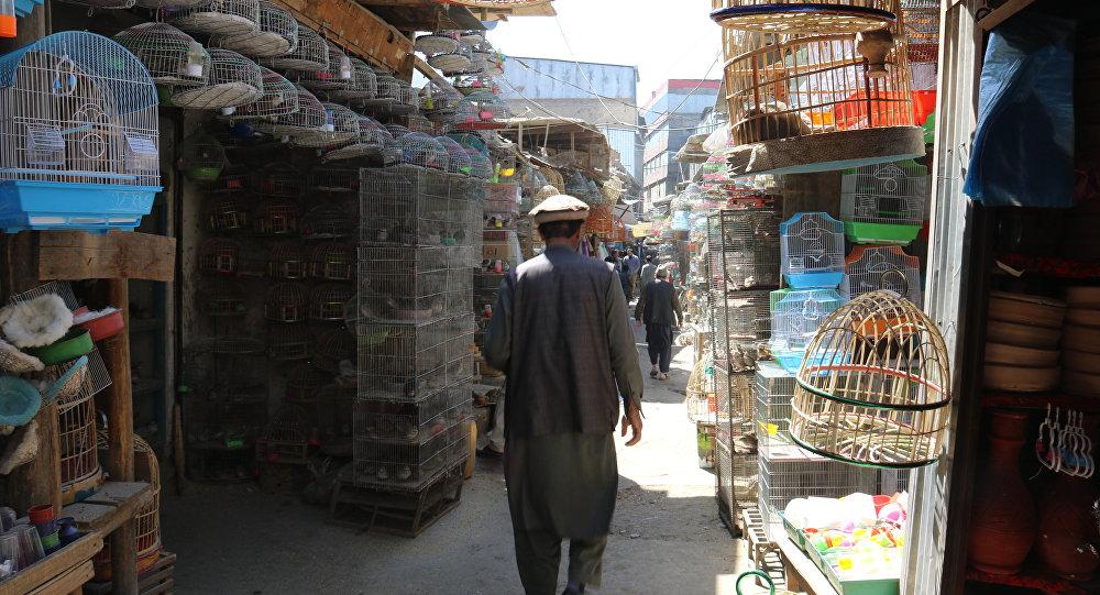 موج خرید و فروش ویزه در بازار
