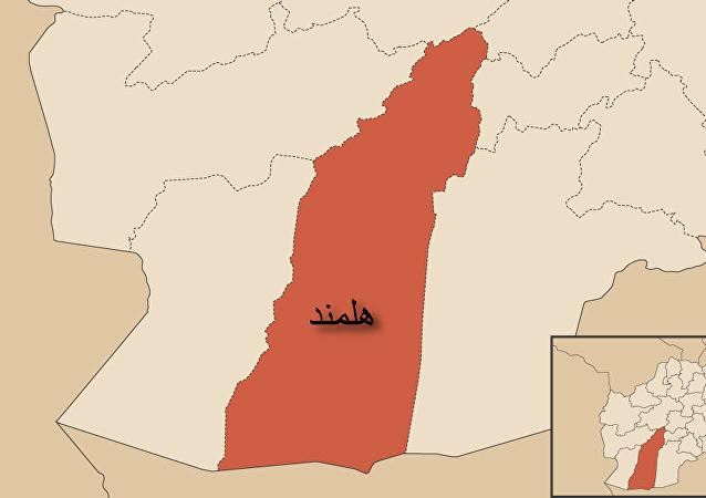 کشته شدن ۴۵ جنگجوی طالبان در هلمند + ویدیو