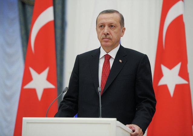 اردوغان: روسیه و ایران اهداف اصلی ما در ترکیه نیستند