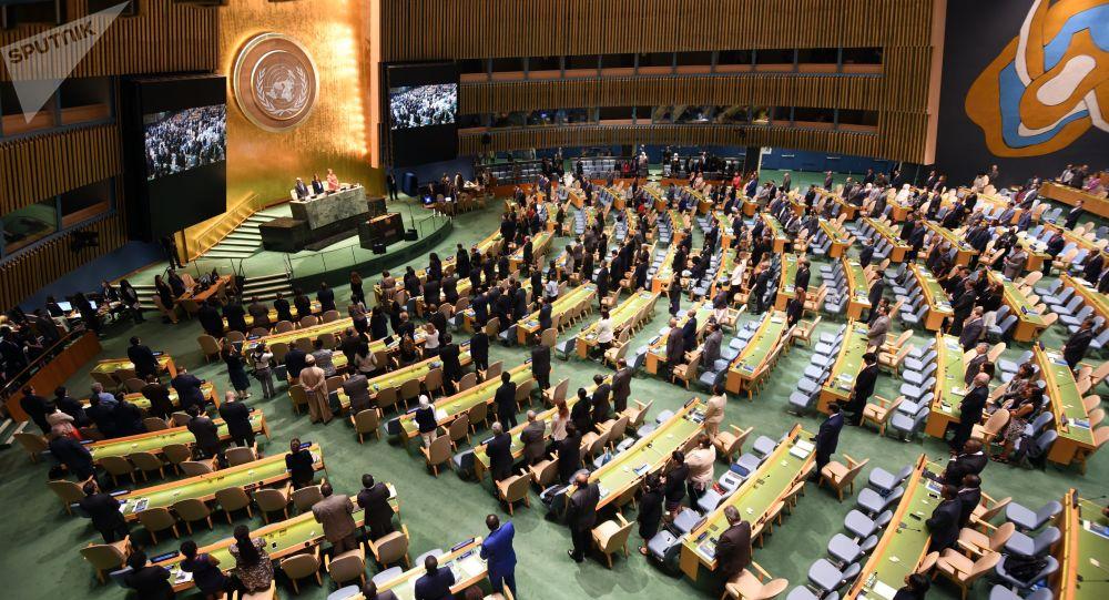 آلمان با شرکت کردن گروه طالبان در مجمع عمومی سازمان ملل مخالفت کرد