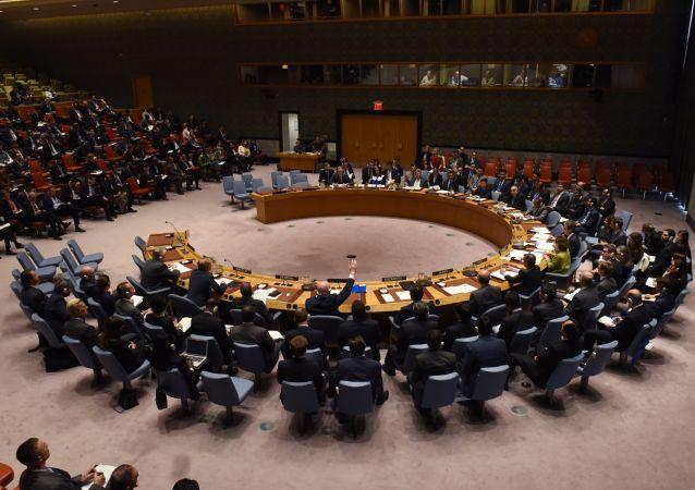 معرفی اعضای جدید شورای امنیت سازمان ملل