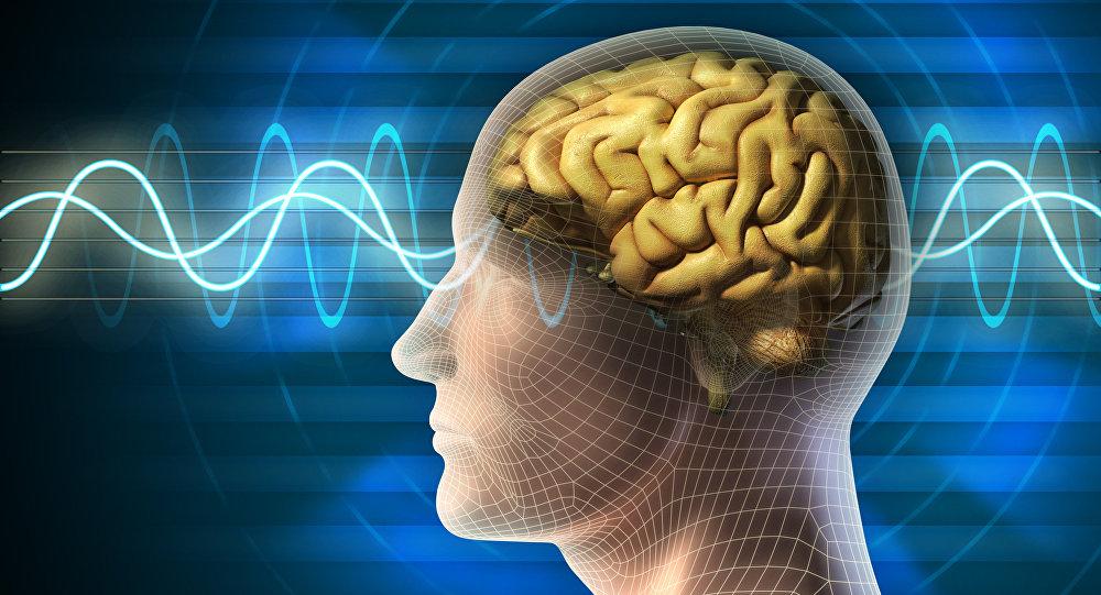 عامل اصلی پیری مغز کشف شد