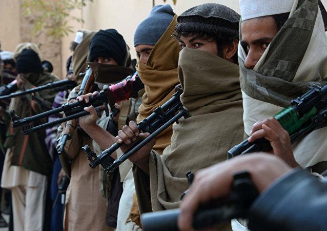 حمله امنیت ملی به فرماندهان طالبان در میدانوردک