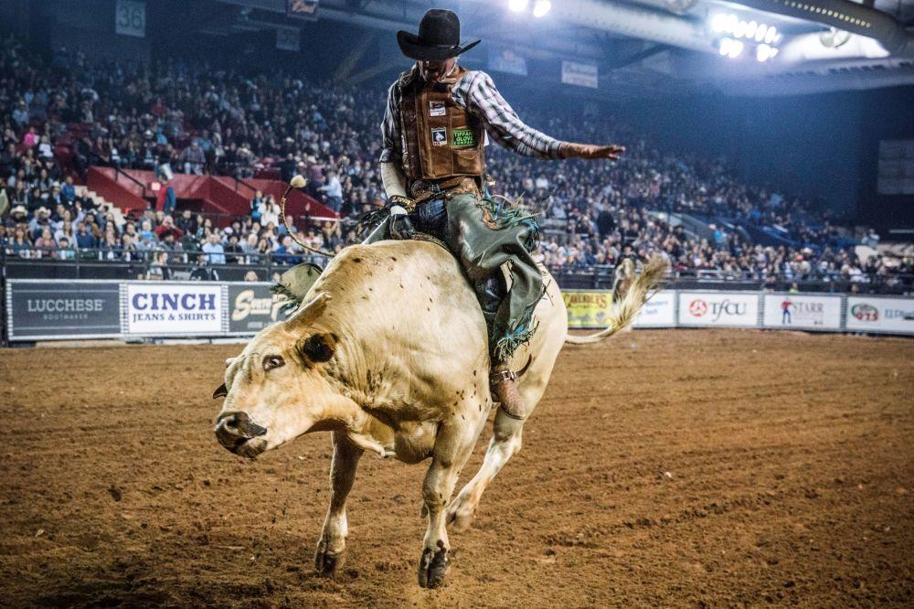 مسابقه گاو سواری Tuff Hedeman Bull Riding Tour – تگزاس، ایالات متحده امریکا