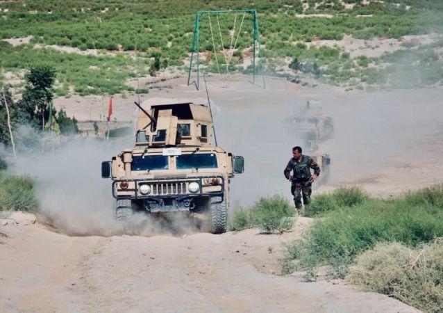 رئیس استخبارات طالبان کشته شد