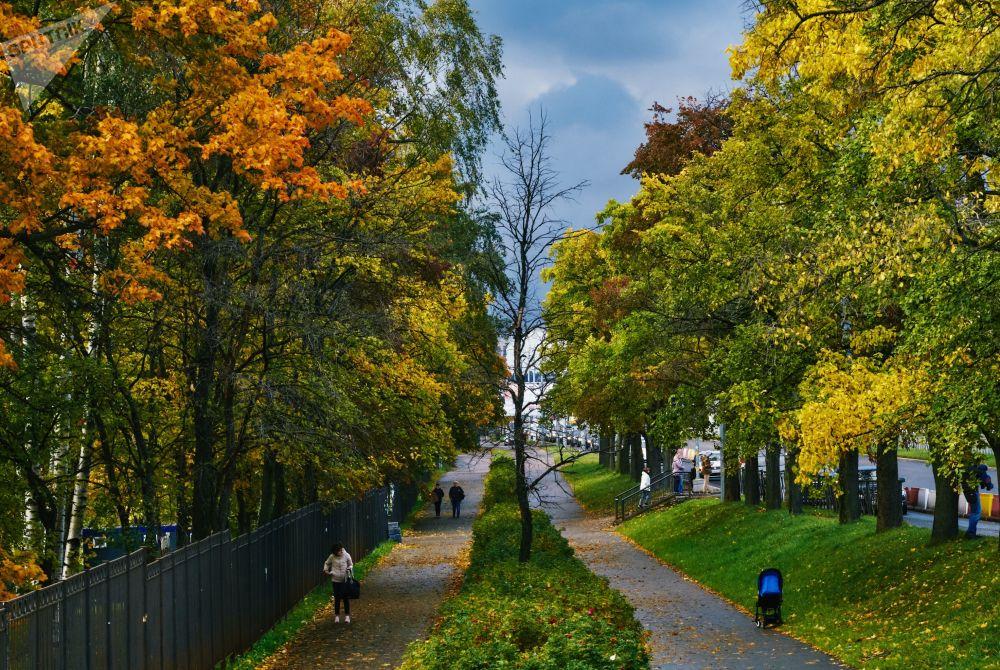 فصل خزان در سن پترزبورگ