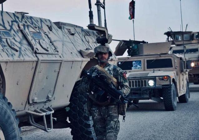 ولسوالی گذره هرات از وجود طالبان پاکسازی شد