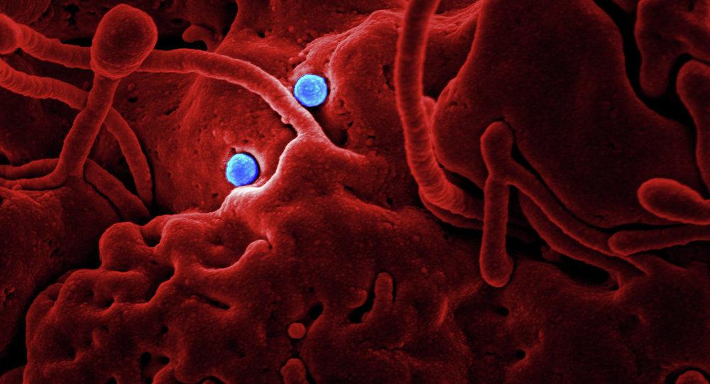 چه چیز باید در مورد کورونا ویروس دانست