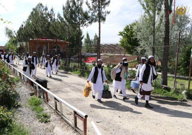 رهایی 102 زندانی دیگر طالبان از بند دولت
