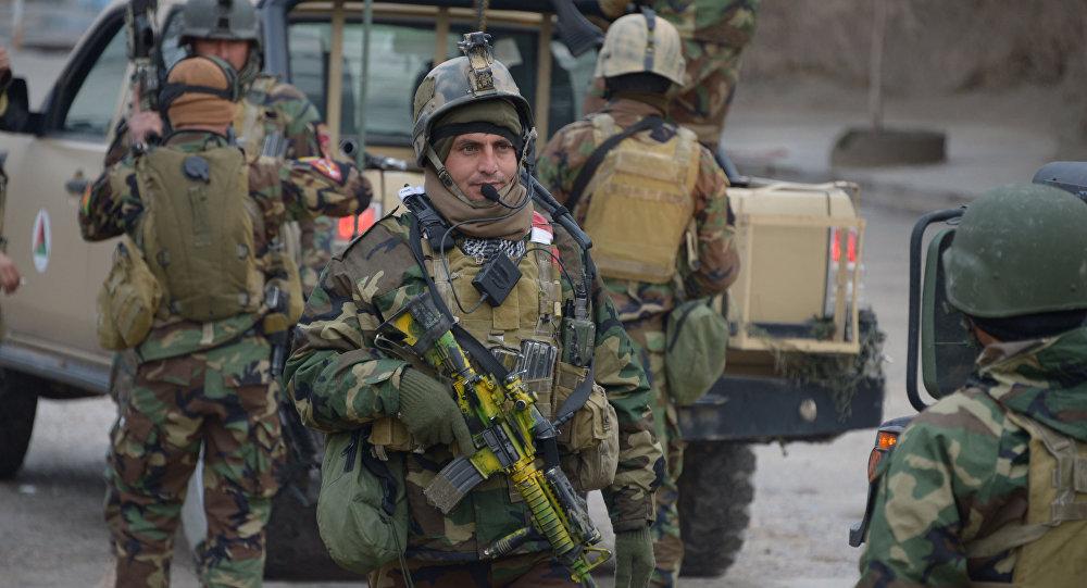 وزارت دفاع: در 24 ساعت گذشته 254 طالب کشته شده اند